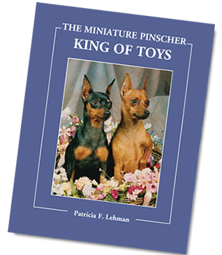 The Miniature Pinscher: King of Toys